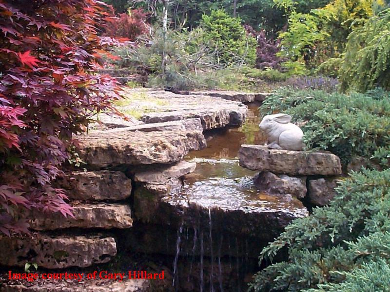 - Dubuque arboretum and botanical gardens ...